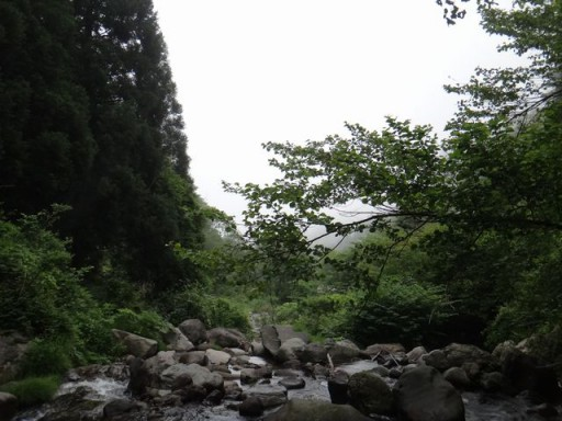 20140608-16